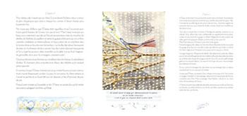 Image livre album-de-lhistoire-de-loiseauqui-avait-perdu-chanson