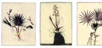 Image livre jardin-deden-petit-traite-naturaliste-mini-livre