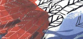 Image livre oiseaux-mini-livre