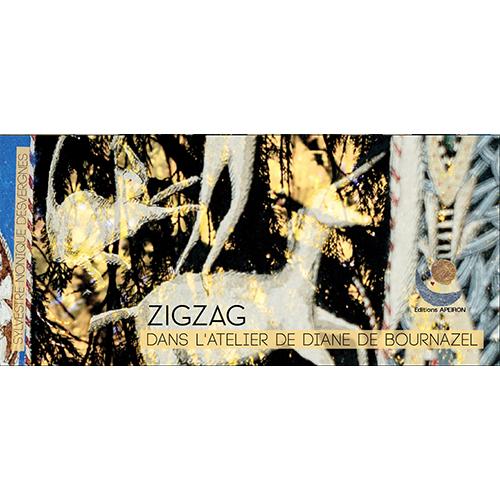 Image zigzag-diane-de-bournazel-visite-latelier-de-diane couverture
