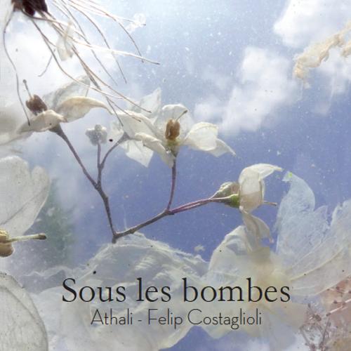 Image sous-les-bombes-carnet-de-resistance couverture
